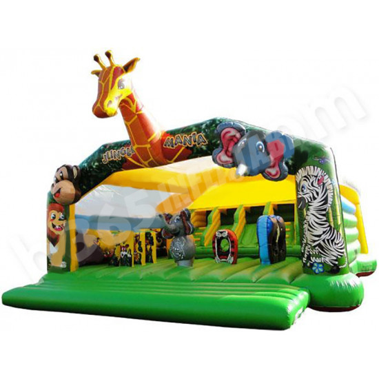 Giant Bouncy Castle With Slide