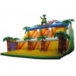 Surfing Dragon Inflatable Slide