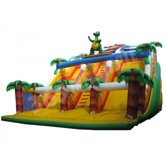 Surfing Dragon Inflatable Slide