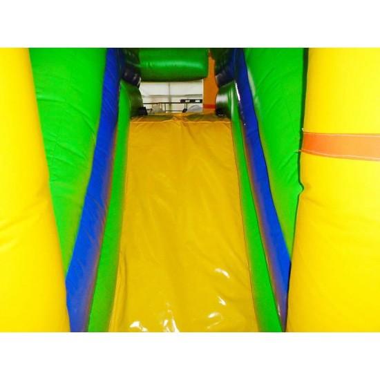 Lion Bouncy Castle Combo